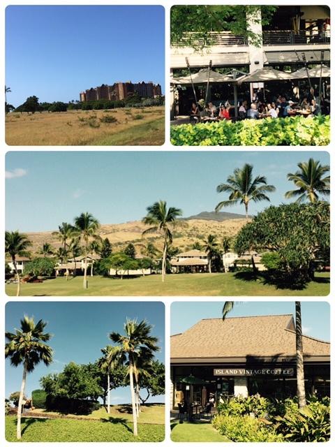 hawaiian railway (1)
