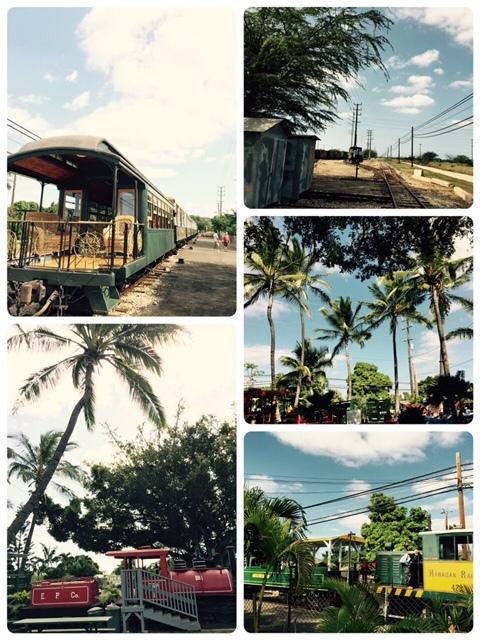 hawaiian railway (4)