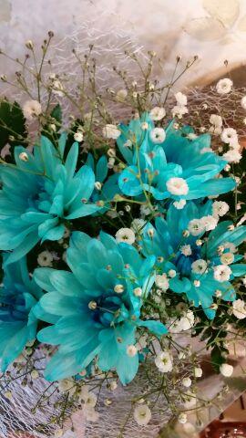 レーヴの花