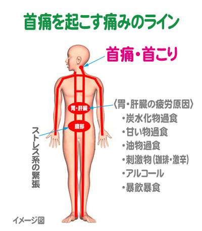 kubi-line1.jpg