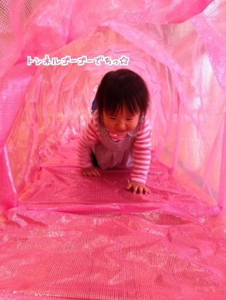 嵐丸 2015.4.10-1