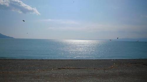 正月に輝く駿河湾を沼津市千本松原からデジショットしました