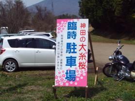 神田の大糸桜の臨時駐車場に駐車して歩きだす時の様子の写真です