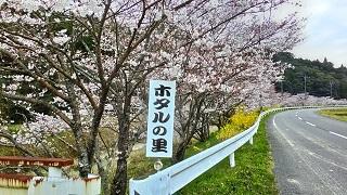 P_20150328_163423_HDR.jpg