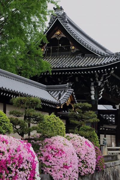 西本願寺・御影堂門 150504 01
