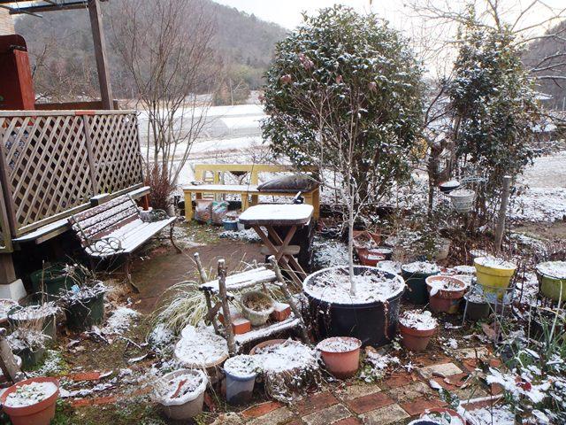 雪の庭220150131