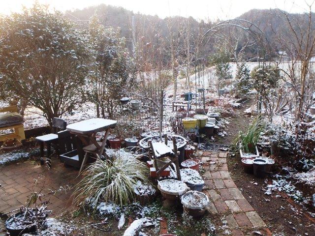 雪の庭2015131