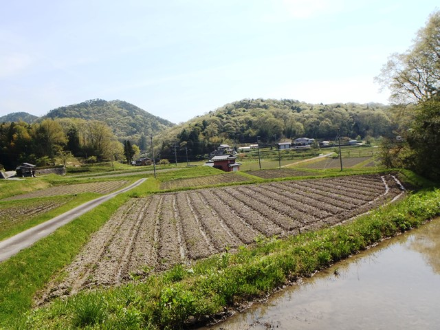養殖田からの景色20150424