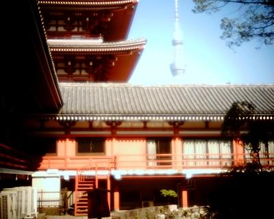 浅草寺の五重塔とスカイツリーと月のはずが・・・:Entry