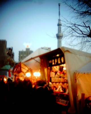 浅草寺羽子板市と東京スカイツリー:Entry
