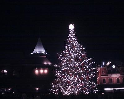 恵比寿ガーデンプレイス・クリスマスツリー2014:R2