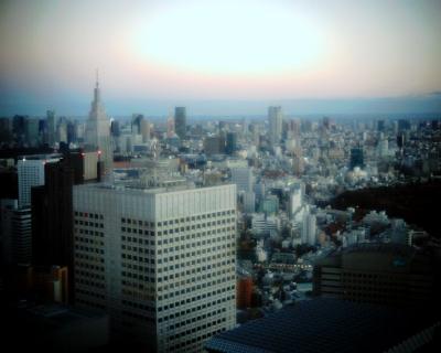 夕暮れの東京タワー:Entrry