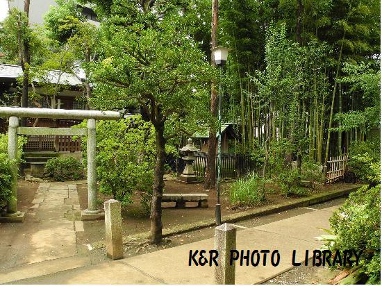 8月30日鳩森八幡神社境内