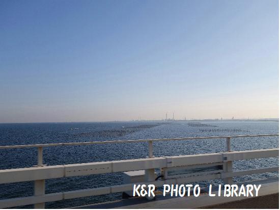 11月23日東京湾の漁場
