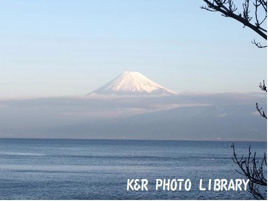 11月30日大瀬崎早朝富士山