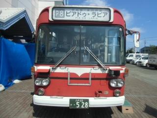 CIMG1334.jpg