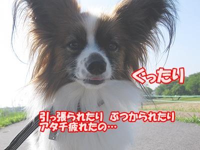 6_2015043012261830e.jpg