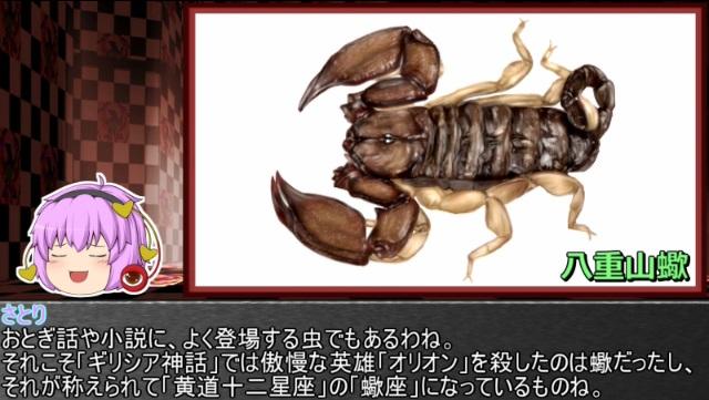 ゆっくり霊夢とやる夫が学ぶ 昆虫大百科 番外編part6