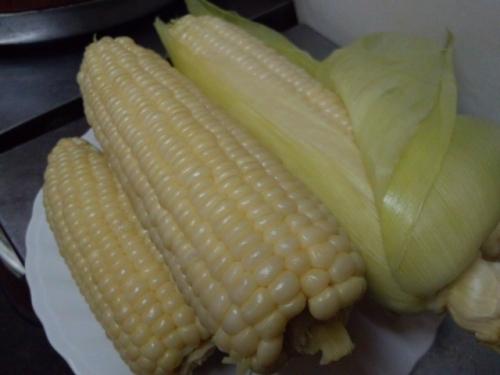 頂き物のトウモロコシ2
