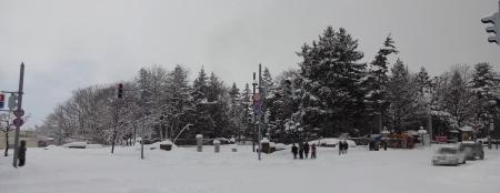 市役所側の交差点から見た岩見沢神社の方