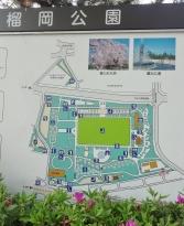 16:11 榴岡公園 マップ