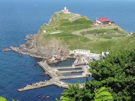 向こうに日和山灯台、鰊御殿、少し手前に水族館の海獣公園が見えます。