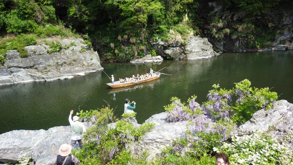 長瀞岩畳の岩藤と川下り舟
