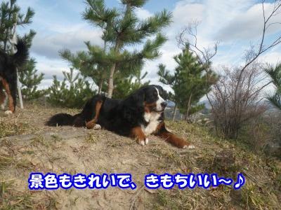 RIMG3232.jpg