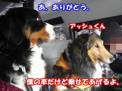 RIMG3369.jpg
