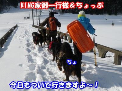 RIMG3373.jpg