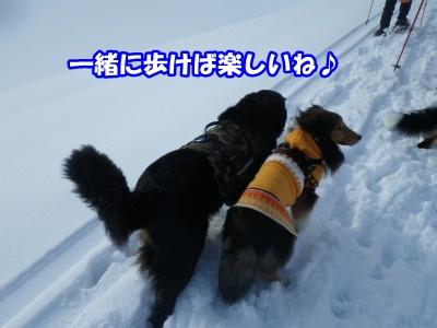 RIMG3376.jpg
