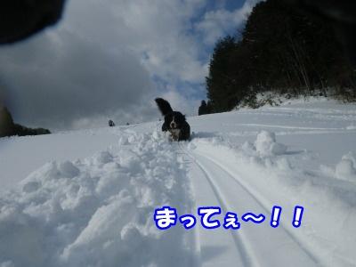 RIMG3407.jpg