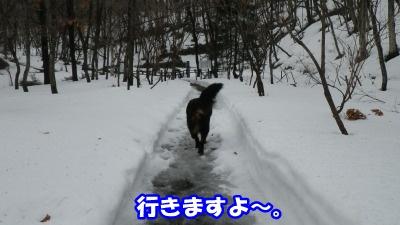 RIMG3805.jpg