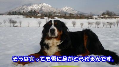 RIMG3875.jpg