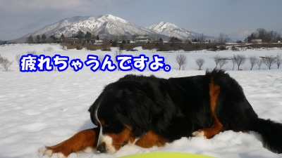 RIMG3877.jpg