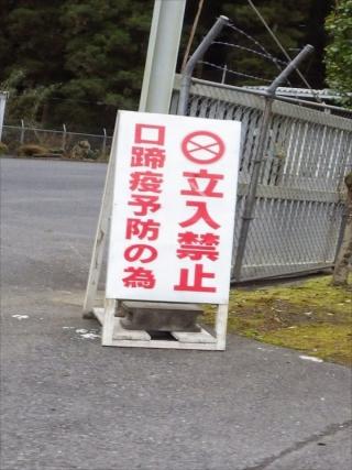 RIMG1098_R.jpg