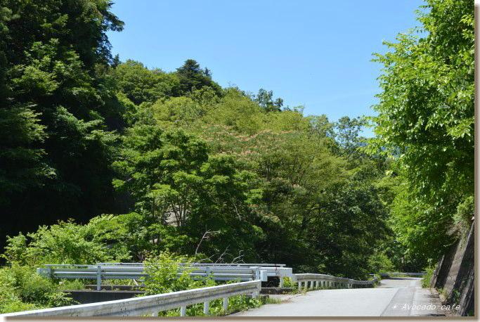 農道への橋