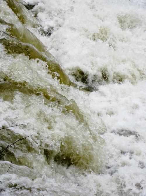 高野川上流大原川