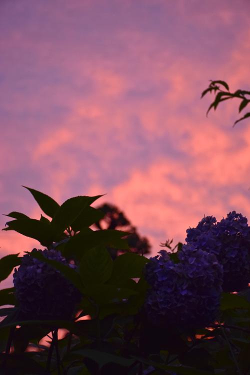 sunset_15_7_5_2.jpg