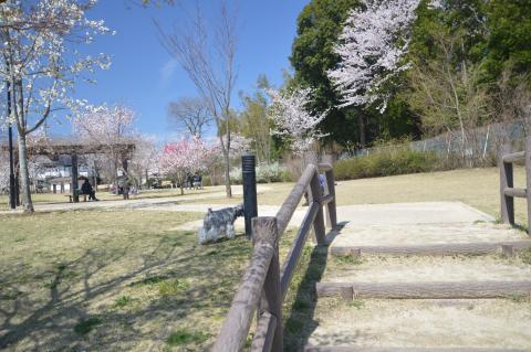 高野山桃山公園にてウィル