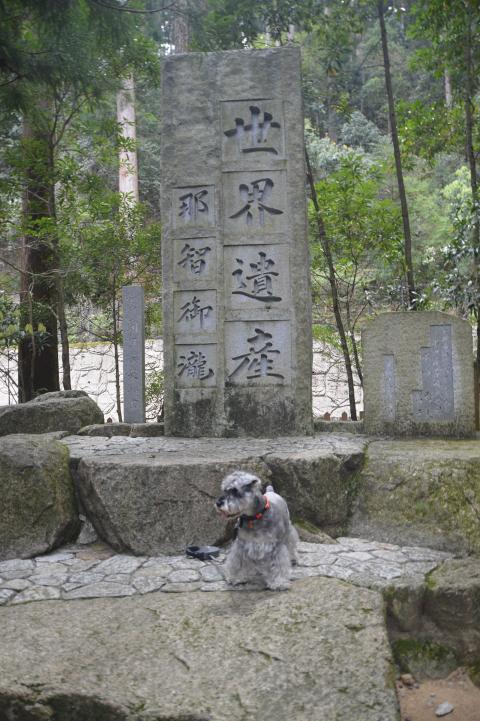 世界遺産の碑とウィル