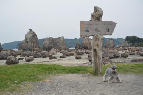 橋杭岩にてウィル