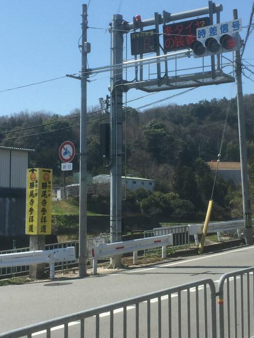 春の西田橋