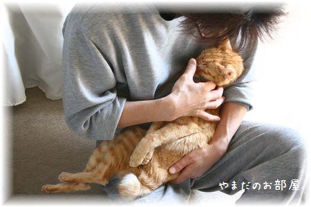 2015.3.31のチャンちゃんと相方②