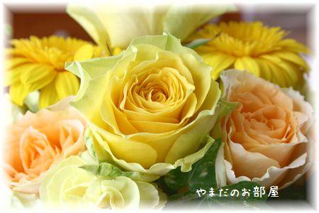 2015年みんニャのお誕生日のお花②