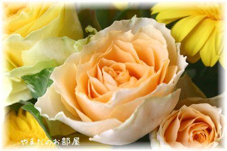 2015年みんニャのお誕生日のお花③
