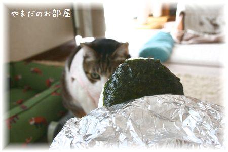 2015.3.7 今日のお昼ご飯^^