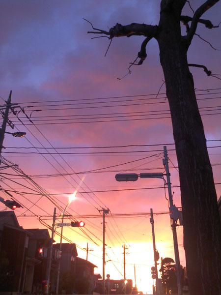 20140415_4.jpg