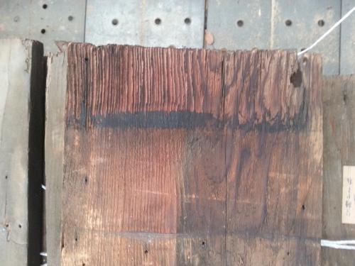 屋根板拡大