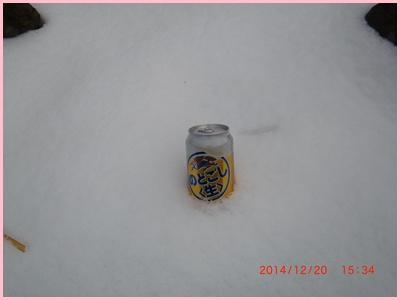 010 ビール